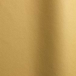 Sierra 367 | Natural leather | Futura Leathers