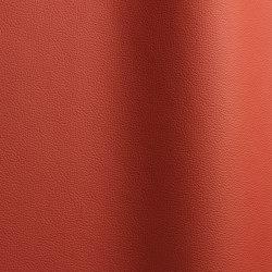 Sierra 387 | Natural leather | Futura Leathers