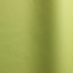 Sierra 407 | Natural leather | Futura Leathers