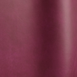 Silk 04060   Natural leather   Futura Leathers
