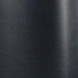 Silk 0780   Natural leather   Futura Leathers