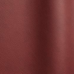 Wind 4102 TT   Natural leather   Futura Leathers