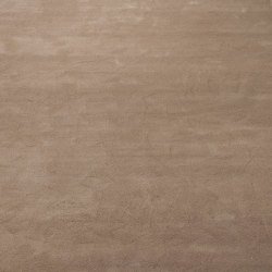 Tussah carpet | Rugs | Linteloo