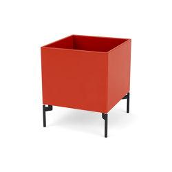 Living Things   LT3861 – plant and storage box  Montana Furniture   Storage boxes   Montana Furniture