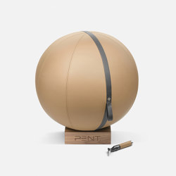 MESNA™ Fitness Ball 65 cm | Fitness tools | Pent Fitness