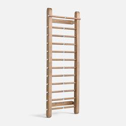 SCALA™ Wall Bar | Upper body equipment | Pent Fitness