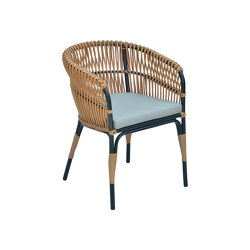 Aruba Dining Armchair   Chairs   cbdesign