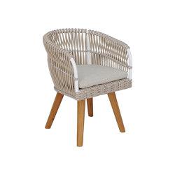 Aruba Dining Armchair Teak Feet | Chairs | cbdesign