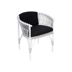Karon Dining Armchair   Chairs   cbdesign