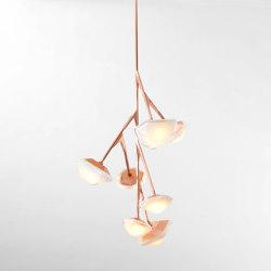MYRIAD Chandelier 7 Vertical | Suspended lights | Gabriel Scott