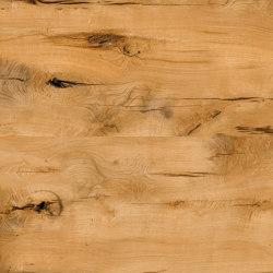 Oak Vital 126 | Wood veneers | SUN WOOD by Stainer