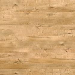 Oak Istria 700   Wood veneers   SUN WOOD by Stainer