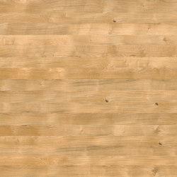 Oak Nature 701 | Wood veneers | SUN WOOD by Stainer