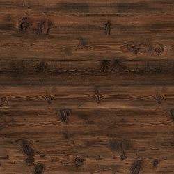 Saloon 06 | Wood veneers | SUN WOOD by Stainer