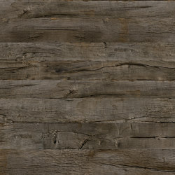 Gobi 09 | Wood veneers | SUN WOOD by Stainer