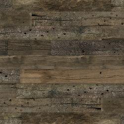 Austrian Train 16 | Wood veneers | SUN WOOD by Stainer