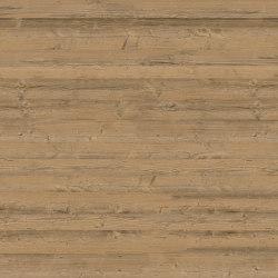 Stallgrau 60 | Wood veneers | SUN WOOD by Stainer