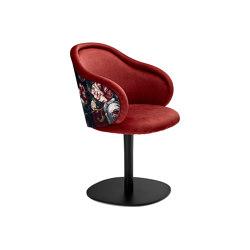 Ona   Curved Armchair mit Tellerfuß   Stühle   FREIFRAU MANUFAKTUR