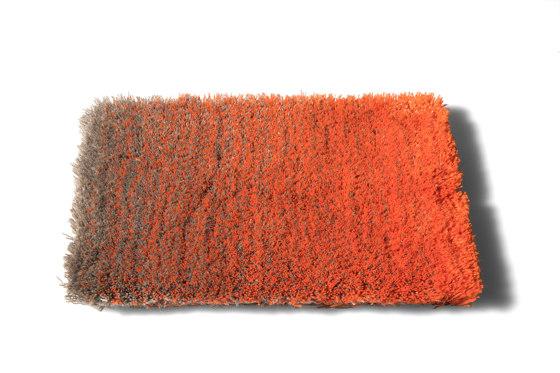 Caméléon 330020 von CSrugs | Formatteppiche