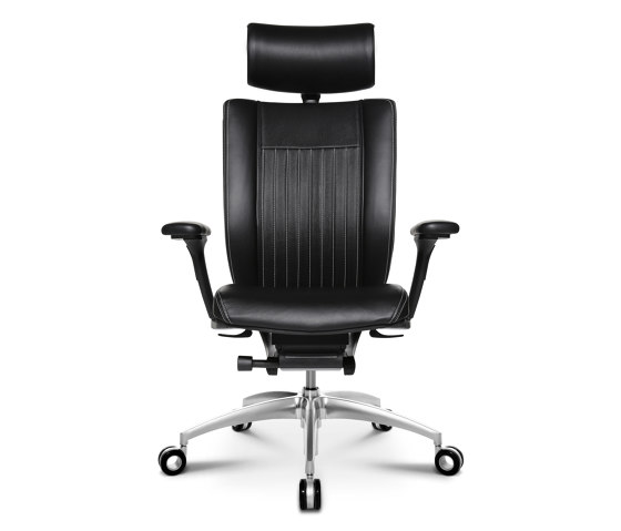 Titan Ltd. S Comfort by Wagner | Office chairs