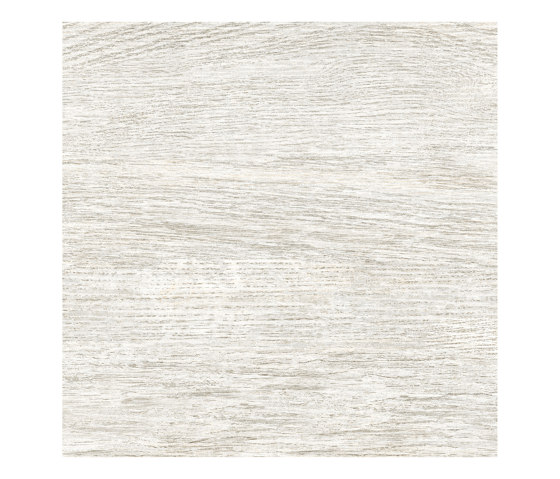 Rainforest Blanco by Ceramica Mayor | Ceramic tiles