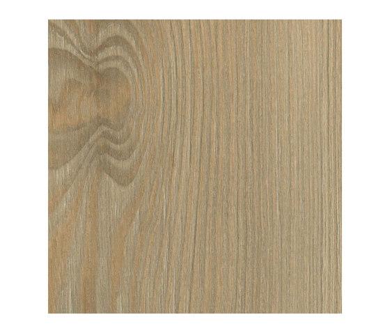 Fano Pine Nature de Pfleiderer | Planchas de madera