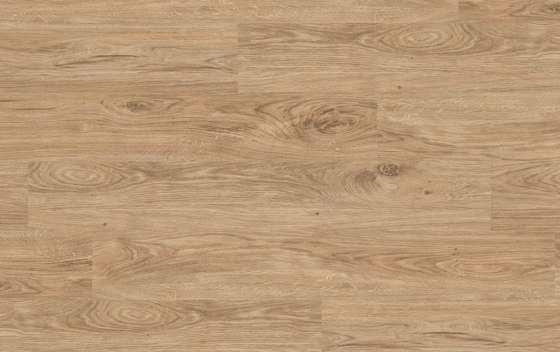 Floors@Home   30 PW 3110 by Project Floors   Synthetic panels