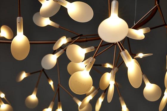 Heracleum The Big O - Small Copper de moooi | Lámparas de suspensión
