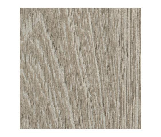 Silver Wenge de Pfleiderer | Planchas de madera