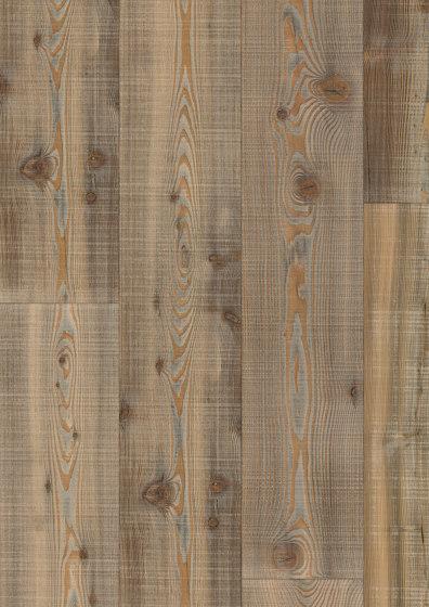 FLOORs Softwood Larch Nata by Admonter Holzindustrie AG | Wood flooring