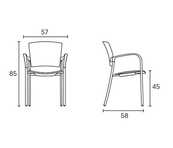 Bio chair di ENEA | Sedie