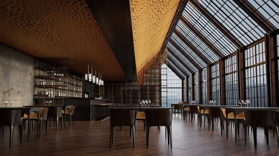 da voronoi ceiling by SPÄH designed acoustic | Acoustic ceiling systems