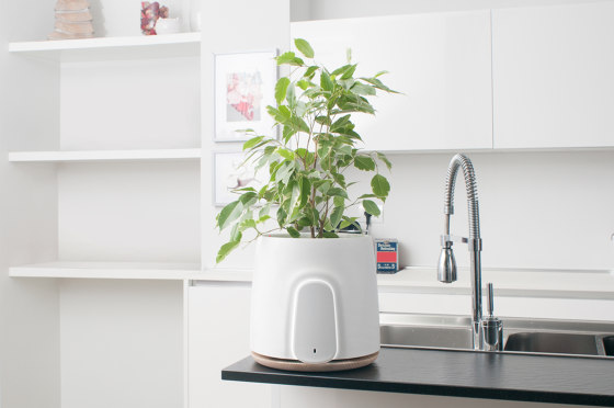 Natede White by Vitesy | Plant pots