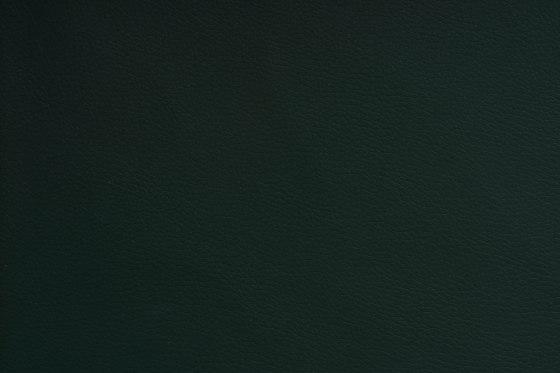 DOLCE POLYURETHANE C5 PINETREE by SPRADLING | Upholstery fabrics