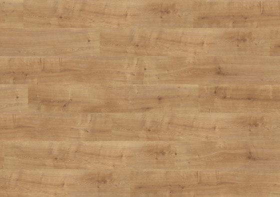 wineo PURline® Planks | Canyon Oak Honey di Mats Inc. | Pavimenti gomma