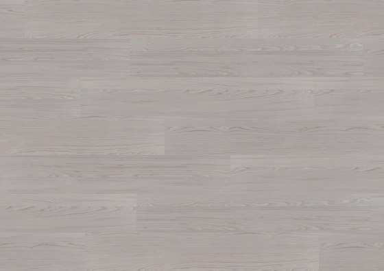 wineo PURline® Planks | Polar Pine by Mats Inc. | Synthetic panels
