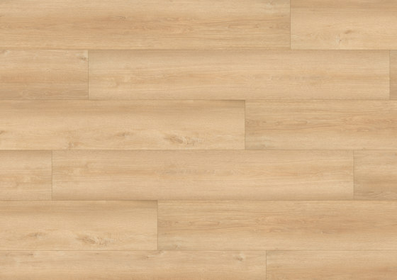 wineo PURline® Planks | Queens Oak Amber di Mats Inc. | Pavimenti gomma