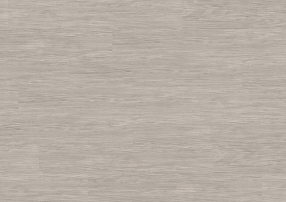 wineo PURline® Planks | Supreme Oak Silver by Mats Inc. | Synthetic panels