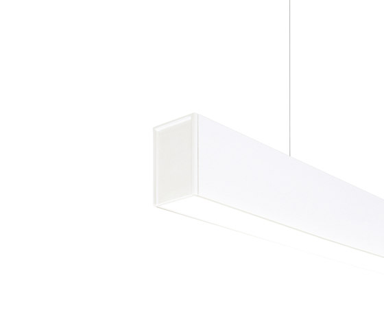 Fifty Ho Suspension | wt by ARKOSLIGHT | Suspended lights