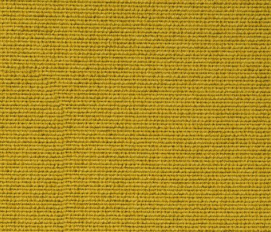 Exclusive 1023 von Vorwerk | Teppichböden