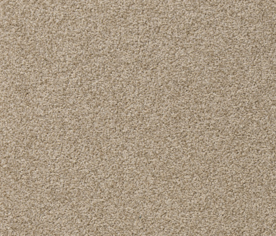 Superior 1010 by Vorwerk | Wall-to-wall carpets