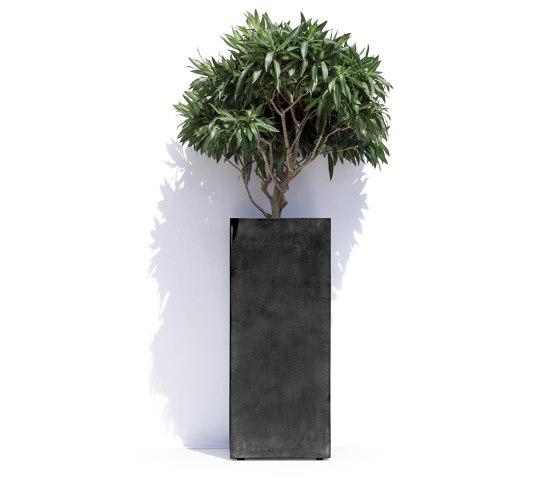 Barcelona by Cosapots   Plant pots