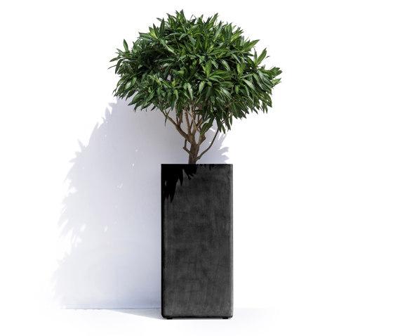 Barcelona R by Cosapots | Plant pots