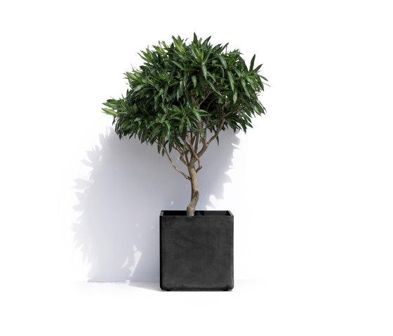 Geneva R by Cosapots | Plant pots