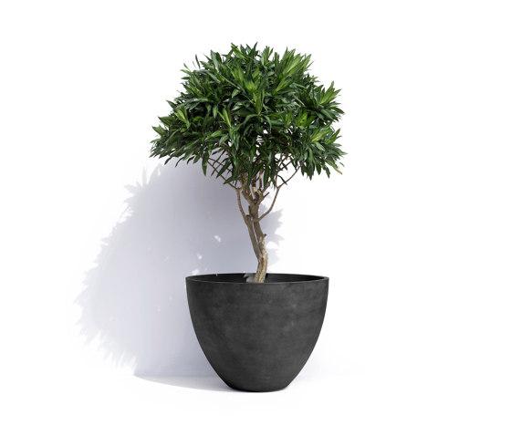 London by Cosapots | Plant pots
