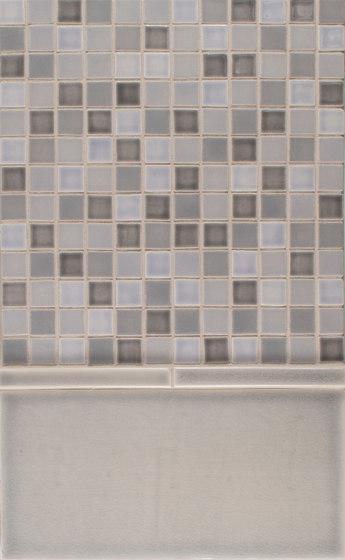 1x1 Portland Field Netted  6x12 Portland Field de Pratt & Larson Ceramics   Carrelage céramique