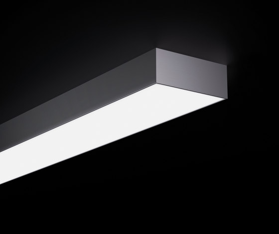 Purelite D by Regent Lighting | Ceiling lights