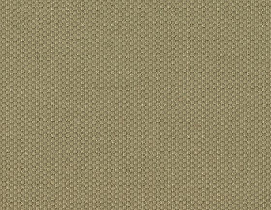 Rio Uni CS - 53 camel by nya nordiska | Upholstery fabrics