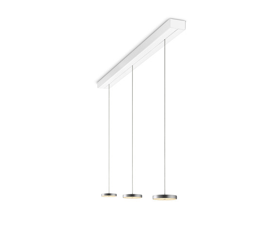 Decent - Pendent Luminaire by OLIGO   Suspended lights
