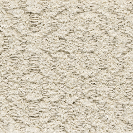 Chenille Bloom | Champagne 800 by Kasthall | Rugs